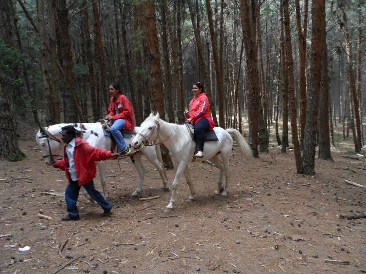 Horse riding at kodai lake