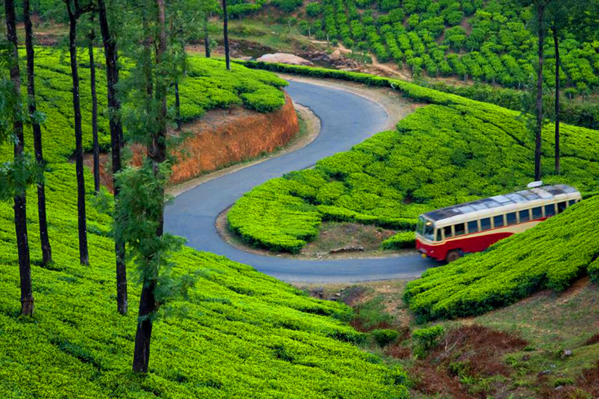 travelogue to munnar Munnar travel guide: explore best tourist places in munnar along with things to do list, sightseeing attractions & holiday packages.