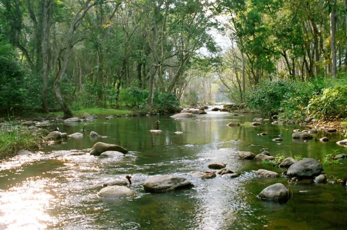 Image result for NEYYAR DAM TOURIST IMAGE